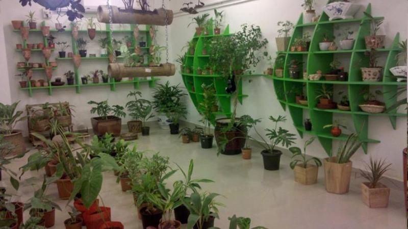 gardening-at-tob