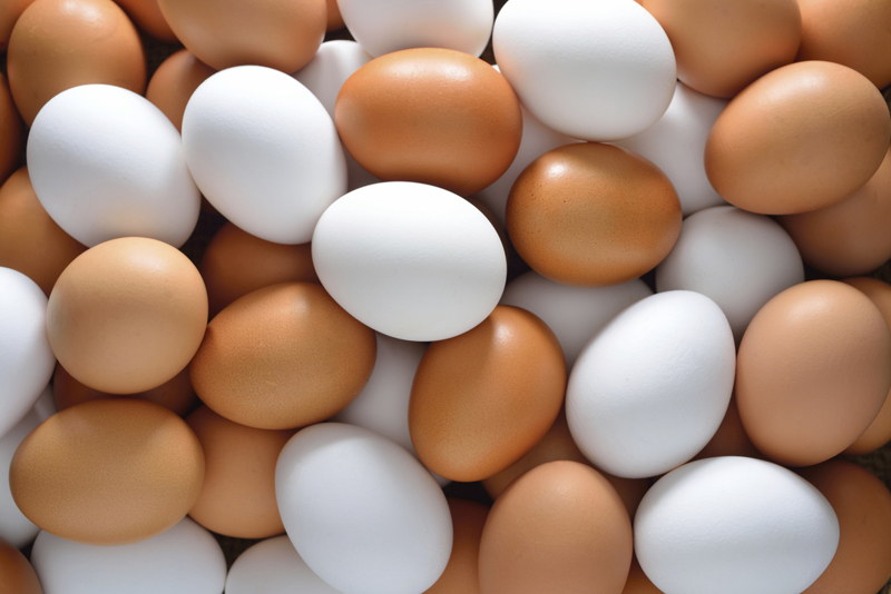 food-value-of-an-egg